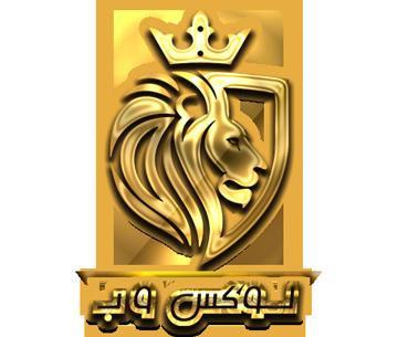 شرکت طراحی وب سایت در شیراز لوکس وب